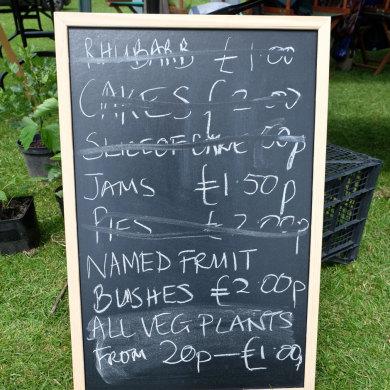 Leominster Festival Plant Fair 2015